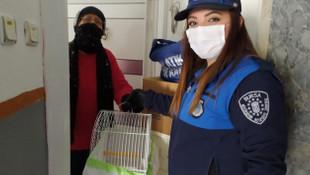 Yaşlıl kadın belediye çalışanlarından muhammet kuşu istedi