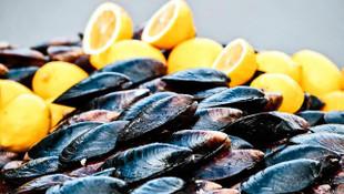 Korkutan açıklama: Atık su, midye ve balıktan da koronavirüs bulaşabilir!