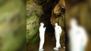 İşte virüs avcıları! Mağara mağara gezip 500 yeni coronavirüs tespit ettiler