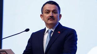 ''HES projeleri Türkiye'ye 233 milyar TL kazandırdı''