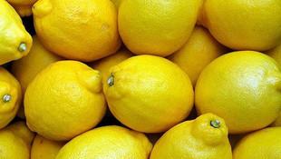 Bakan Pakdemirli 10 bin ton limon ihracatı yapılacağını açıkladı