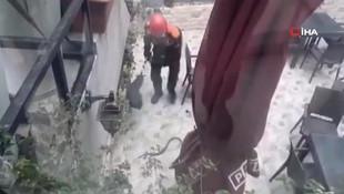 İstanbul'da yılan paniği