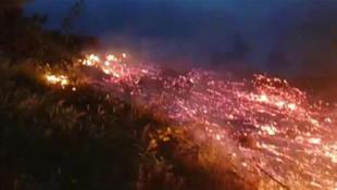 İnegöl'de yangın! 10 dönümlük alan küle döndü