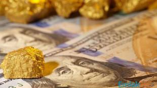 Altın ve döviz vergisine %500 zam!