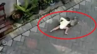 Çocuk kaçırmaya çalışan maymun kamerada