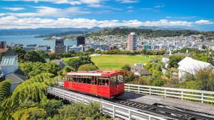 Yeni Zelanda bir ülke dışında tüm dünyaya kapılarını kapattı