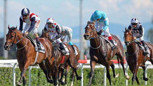 TJK'dan at yarışlarının başlangıcı için ilk açıklama