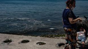 Caddebostan'da deniz kirliliği vatandaşı rahatsız etti