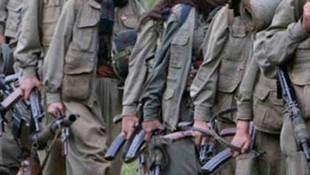 Hatay Valiliği açıkladı! 11 bombalı eylem gerçekleştiren 7 terörist yakalandı