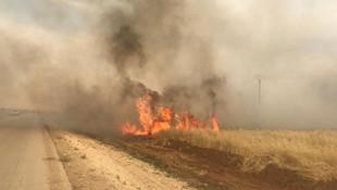 Terör örgütü PKK/YPG'nin hain planı