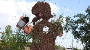 ''Vanlı arı adam'' dünya rekorunu kırmak için 49 kilo arıyı üstünde topladı