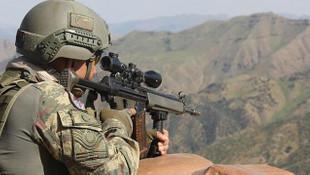 İçişleri Bakanlığı açıkladı: Gri listedeki terörist etkisiz hale getirildi