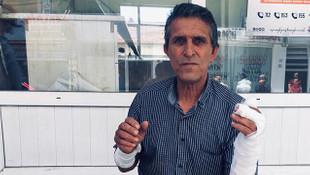Yozgat'ta ayı saldırısı! 1 kişi yaralandı