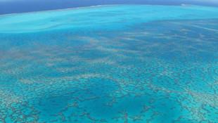 Bilim insanları açıkladı: Yeni bir okyanus oluşacak!