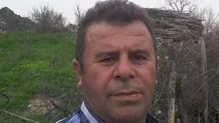 Samsun'da üzerine ağaç düşen şahıs hayatını kaybetti