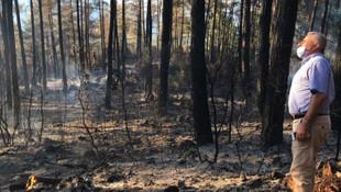 Orman yangını değil; maganda yangını!