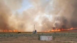 Ankara'da yangın! 700 dönüm arazi küle döndü!