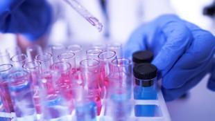 Oxford Üniversitesi: Virüs ortaya çıkmadan önce yıllarca pusuda bekledi