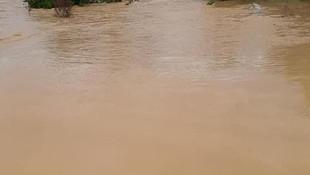 Sağanak hayatı felç etti! Köprüler ve tarım arazileri sular altında