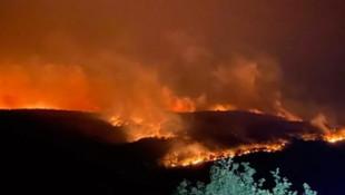 Bulgaristan'daki yangın Türkiye sınırına ulaştı