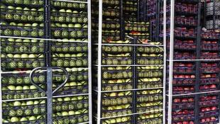Tarım ürünleri ihracatı koronavirüse rağmen arttı