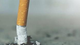 Ünlü bilim insanı sigara içenlere müjdeyi(!) verdi!