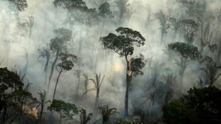 Amazon'da 10 günde 10 bin orman yangını!