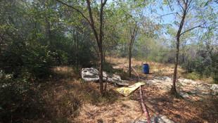 Düzce'de orman yangını! 4 hektar alan küle döndü