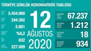 Test sayısında dikkat çeken artış! İşte son 24 saatin koronavirüs bilançosu