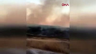 Bozcaada'daki yangında vatandaşlar yardıma çağrıldı