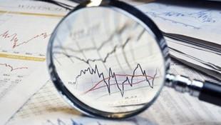 Türkiye ekonomisi için ''esham'' modeli önerisi