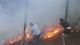 Maltepe'de ormanlık alanda yangın paniği