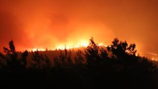 İzmir'deki yangın tahliye edilen siteye sıçradı