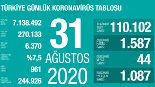 Vaka sayıları artmaya devam ediyor! İşte son 24 saatin koronavirüs tablosu