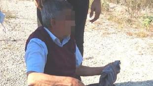 Yaşlı adam köpeğe tecavüz ederken suçüstü yakalandı