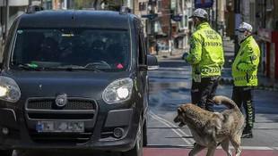 ''Ankara ve İstanbul'da kısmi sokağa çıkma yasakları gündeme getirilmeli''