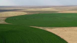 Devletten kiralık tarım arazisi! 6 pilot il belirlendi