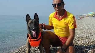 Türkiye'nin ilk cankurtaran köpeği iş başı yaptı!