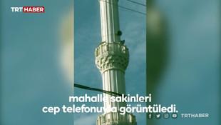 Cami minaresinde sürpriz misafir!