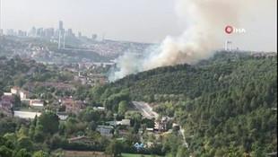 İstanbul'da orman yangını! Boğazdan dumanlar yükseldi