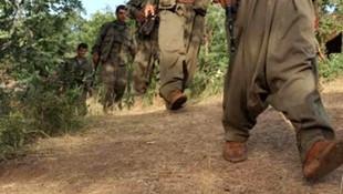 PKK'dan kaçışlar sürüyor! 5 terörist daha teslim oldu