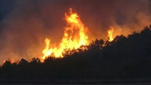 Uşak'ta orman yangını! İki mahalle tahliye edilecek
