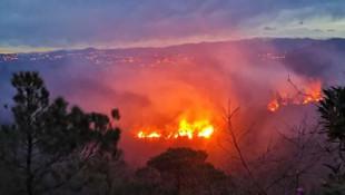 Trabzon'da 2 ilçede korkutan yangın