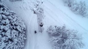 Bursa'da dağlara kar yağınca şehre indiler