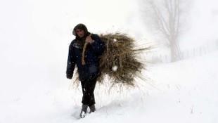 Doğu Anadolu Bölgesi'nde kar yağışı etkili oldu