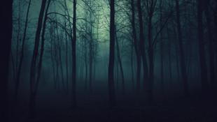 Genç kadına ormanda tecavüz eden kuryenin cezası belli oldu