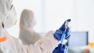 Koronavirüs mutasyonları arasında hangi farklar var?