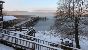 ''Kuş cenneti'' Efteni Gölü, buz cenneti oldu