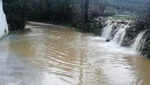 Muğla'da yağmur hayatı felç etti, sokaklar dereye döndü