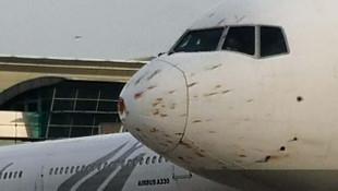 Havada panik anları! Kuş sürüsüne çarpan uçak acil iniş yaptı